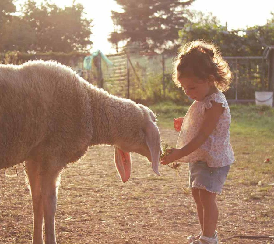 fotografo bambini - ilenia costantino fotografa - 41