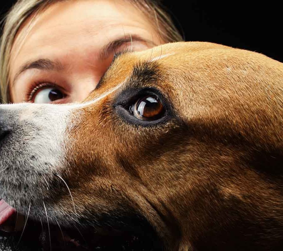 fotografo cani - ilenia costantino fotografa - 19