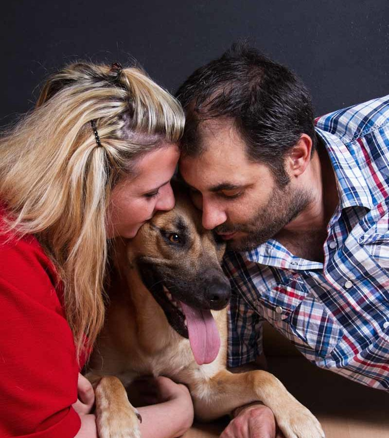 fotografo cani - ilenia costantino fotografa - 60