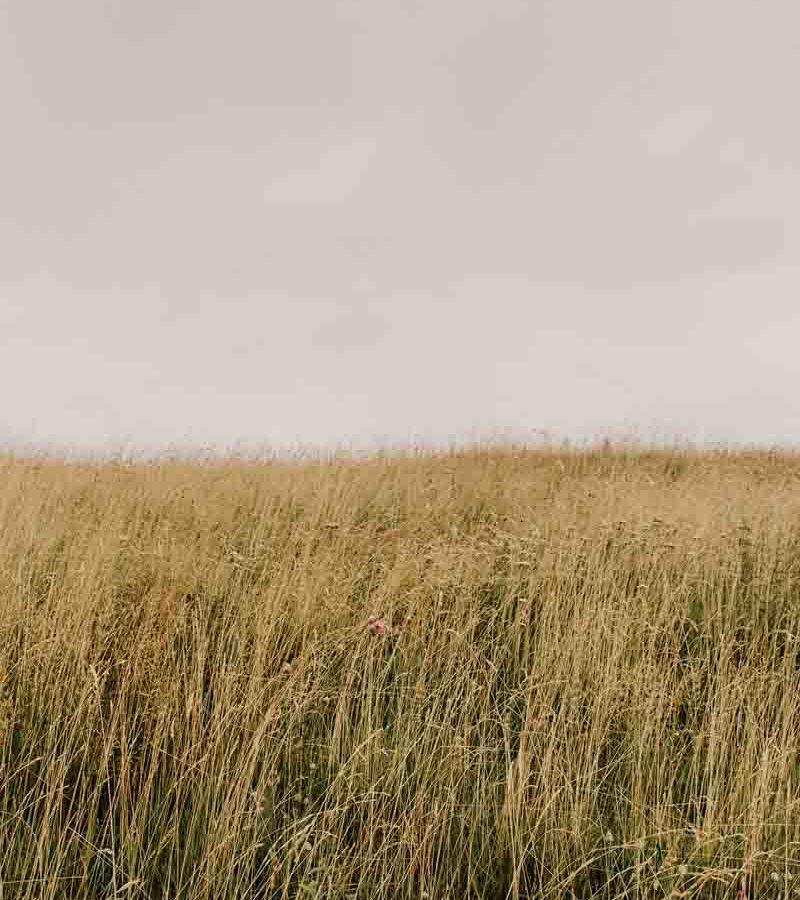 fotografo mariano comense - ilenia costantino fotografa - 21