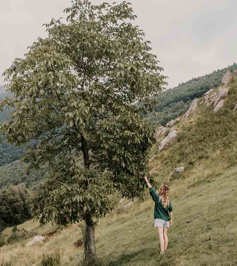 fotografo mariano comense - ilenia costantino fotografa - 24
