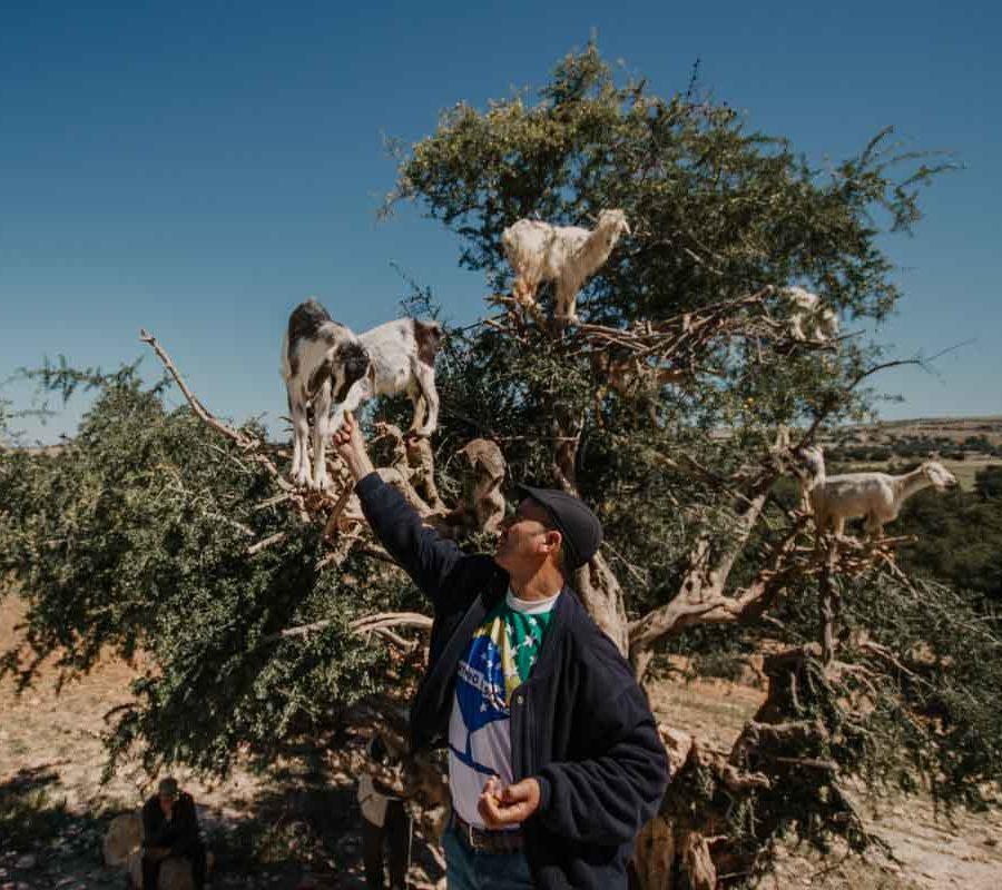 marocco - ilenia costantino fotografa - 6